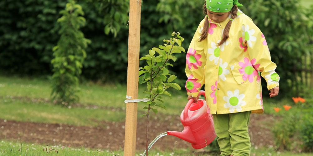 girl-watering-apple-tree-wallaces