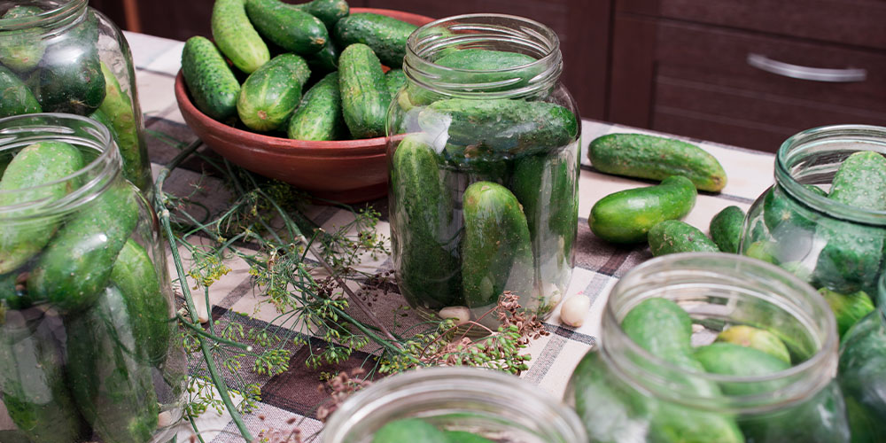 canning cucumbers for pickling