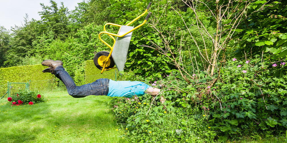 man diving into the bush with wheelbarrow in the air