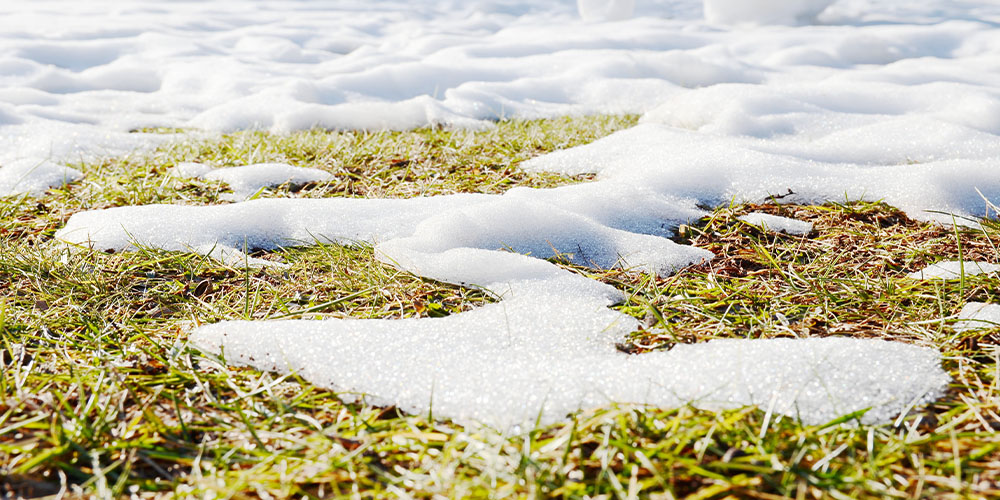 melting snow on lawn