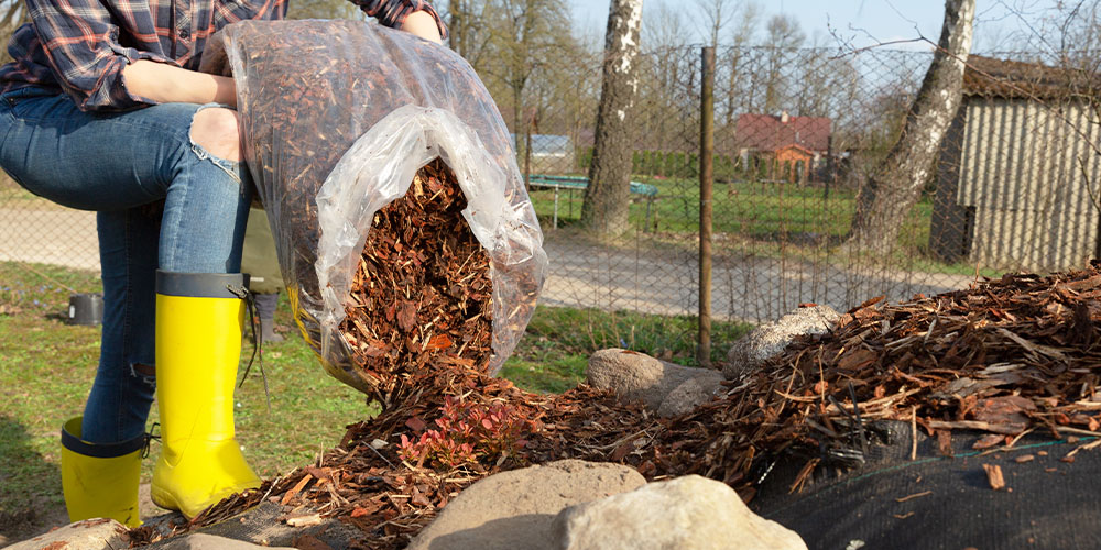 emptying bag of mulch into garden bed